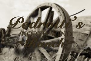 Pedrottis-wheel-logo-1.png